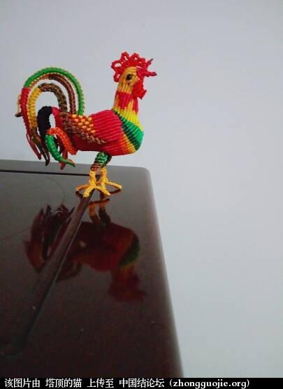中国结论坛 公鸡中的战斗鸡  立体绳结教程与交流区 124155tfhhy802h1phrrvp