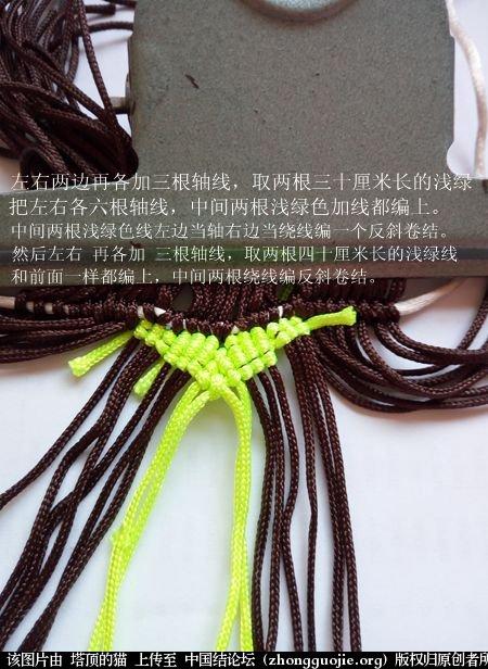 中国结论坛 宝鸡报晓希望 做广告,宝鸡 立体绳结教程与交流区 231019azr3uz288szlpgcz