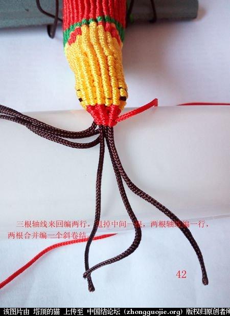 中国结论坛 宝鸡报晓希望 做广告,宝鸡 立体绳结教程与交流区 231040pjjd6jjz785zmq6z