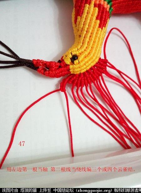 中国结论坛 宝鸡报晓希望 做广告,宝鸡 立体绳结教程与交流区 231043bam49ovg0qoxm0m4