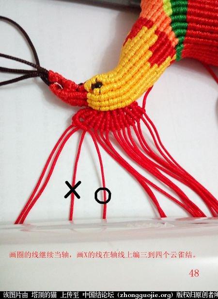 中国结论坛 宝鸡报晓希望 做广告,宝鸡 立体绳结教程与交流区 231044rm4vqou0y99j668y