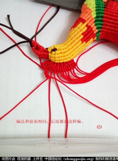 中国结论坛 宝鸡报晓希望 做广告,宝鸡 立体绳结教程与交流区 231045bt1h9p930bluh0at