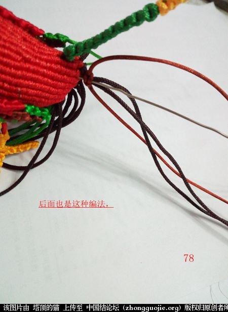 中国结论坛 宝鸡报晓希望 做广告,宝鸡 立体绳结教程与交流区 231056ldddg7nnb5adz7da