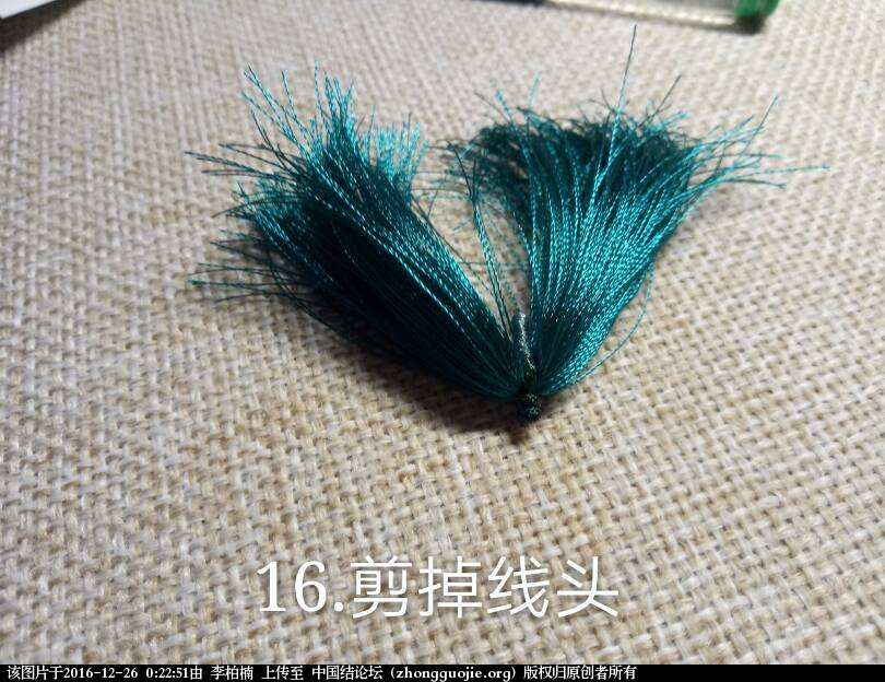 中国结论坛   图文教程区 002251wag1etqpigbgjenz