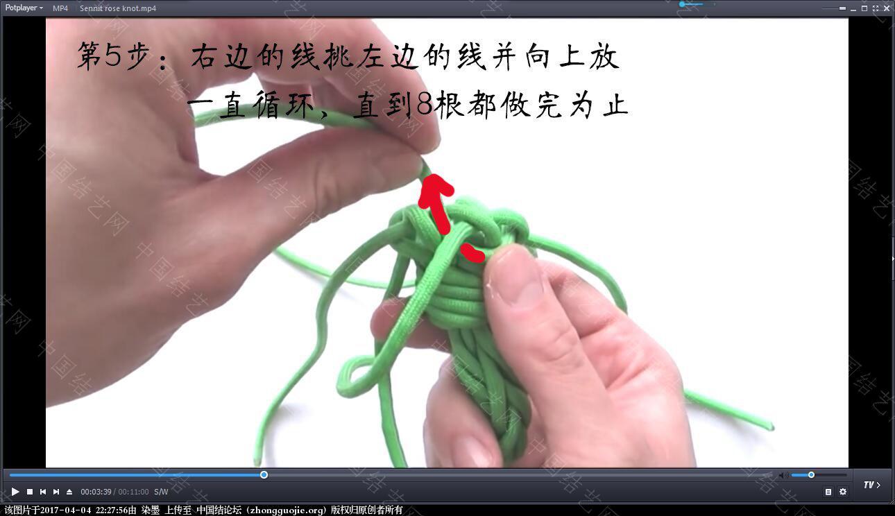中国结论坛 伞绳吉祥玫瑰视频教程 玫瑰,伞绳,视频教程 视频教程区 222333e6me1e56h3dx0oww