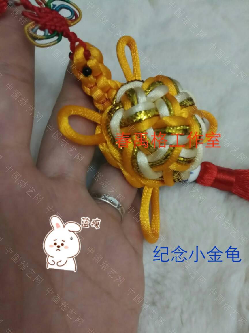 中国结论坛 纪念小金龟 佩戴黄金乌龟的寓意,发财金龟图片,佩戴金龟有什么寓意,小时候玩的金色乌龟,女的佩戴乌龟吊坠好吗 作品展示 075507v5ev25z7xgxac8xu