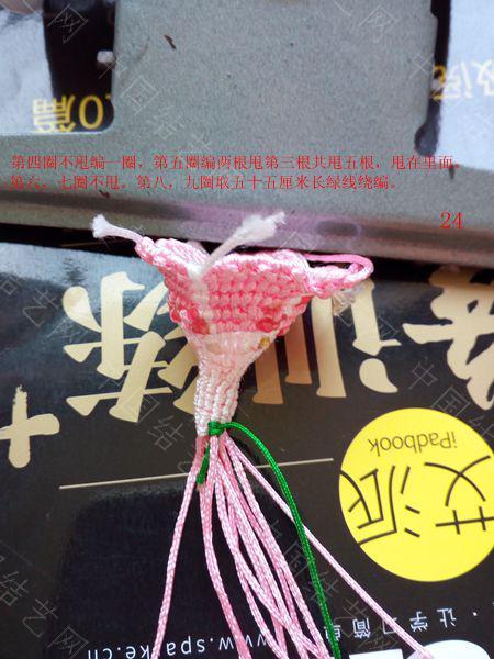 中国结论坛 包饰,夏赏牵牛红  图文教程区 143711vglwaowkrralx63u
