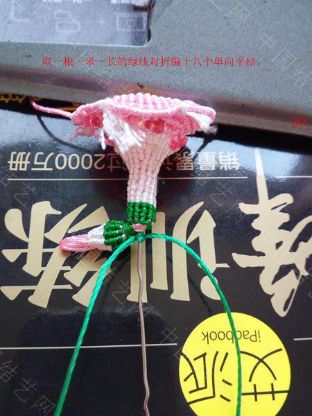 中国结论坛 包饰,夏赏牵牛红  图文教程区 143712dq9xl53hh8tz63vy