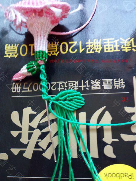 中国结论坛 包饰,夏赏牵牛红  图文教程区 143713awz6juefbjuf5uo6