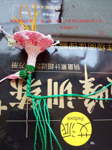 中国结论坛 包饰,夏赏牵牛红  图文教程区 143713i4rujrgog4t44rgb