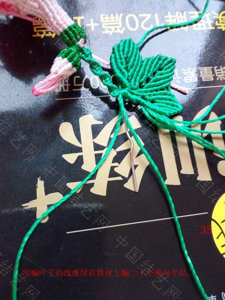 中国结论坛 包饰,夏赏牵牛红  图文教程区 143714jkpmmz47hhqy9hhh