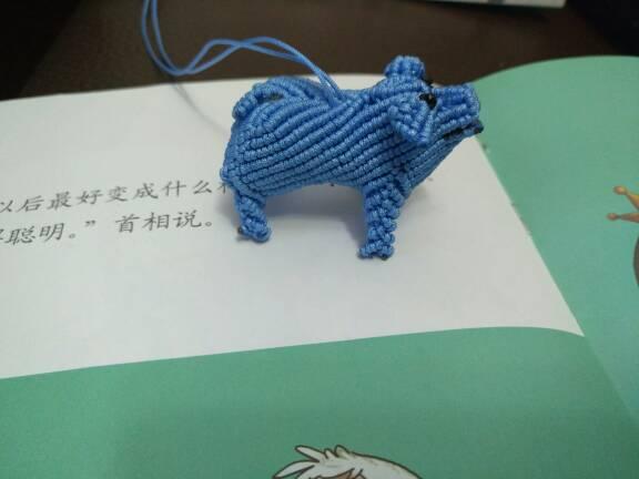 中国结论坛 跟李钉老师学的小猪 李钉,老师,小猪,教小猪的哇呜老师是谁 作品展示 094741kvr196mlvl9qvrs9