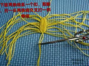 中国结论坛 不完整的花生教程  图文教程区 172609wi1oxmc0088xc9kk