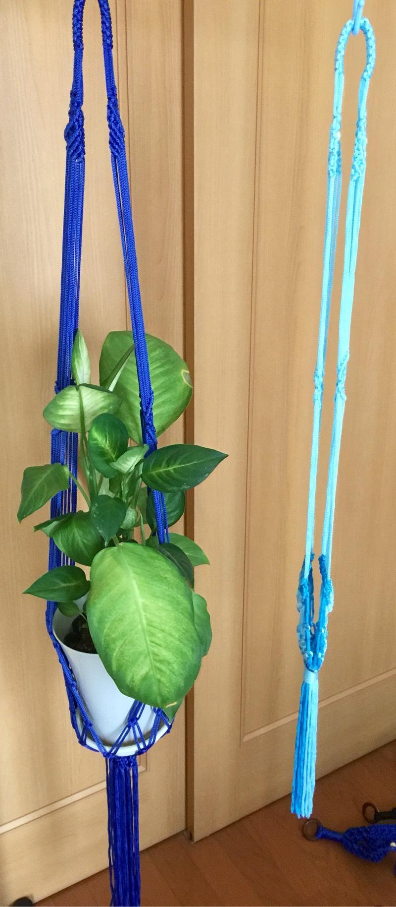 中国结论坛 吊挂植物架都完工 吊挂,植物,完工,垂吊植物大全,耐阴的垂吊植物有哪些 作品展示 221741x7ga7d8q7r187c2t