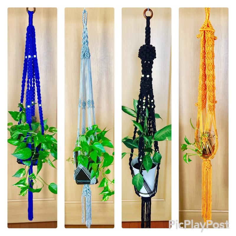 中国结论坛 吊挂植物架都完工 吊挂,植物,完工,垂吊植物大全,耐阴的垂吊植物有哪些 作品展示 221742p8amh9bath9z17cz