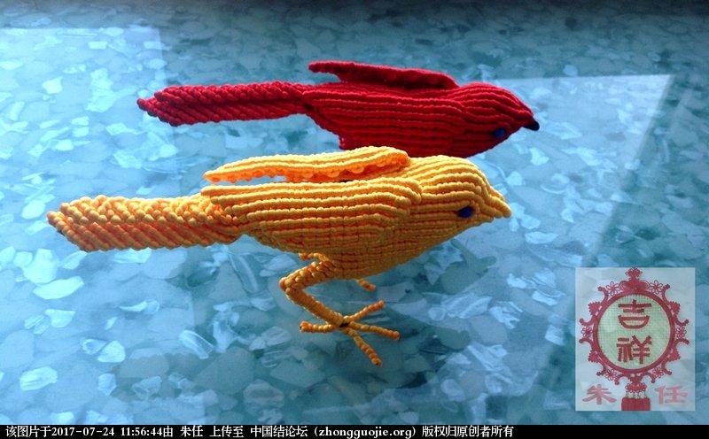 中国结论坛 红鸟黄鸟  作品展示 115225hxydiy1ga2dfuy5d