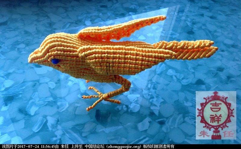 中国结论坛 红鸟黄鸟  作品展示 115503z7k33dsc0ggfz23y
