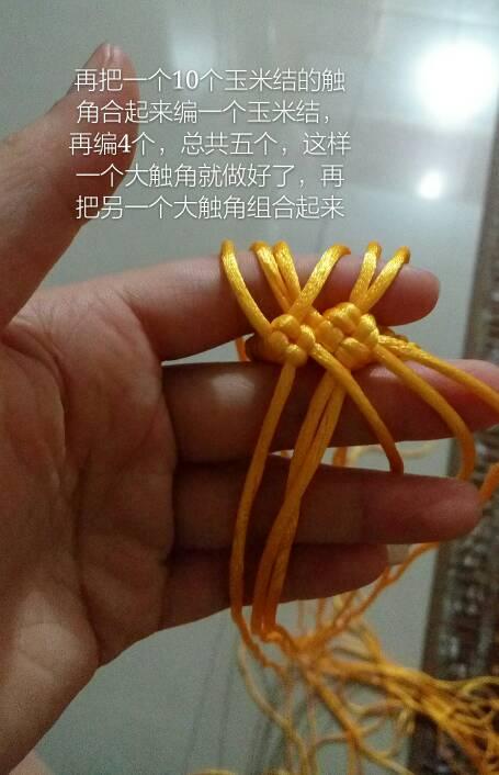 中国结论坛 仿编生肖老师的龙,有所改动,给大家做了个教程,希望对大家有所帮助  立体绳结教程与交流区 013341apajvikkvwk2p26o
