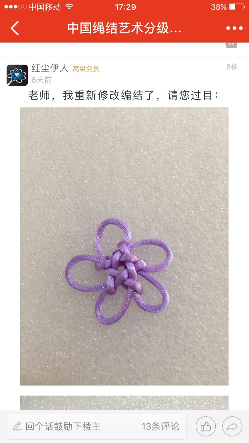 中国结论坛   中国绳结艺术分级达标审核 173054d8belsbybyljh1yz