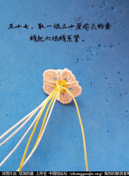 中国结论坛 茉莉花别针小教程  图文教程区 172820f1oti53hiyq2t2vh