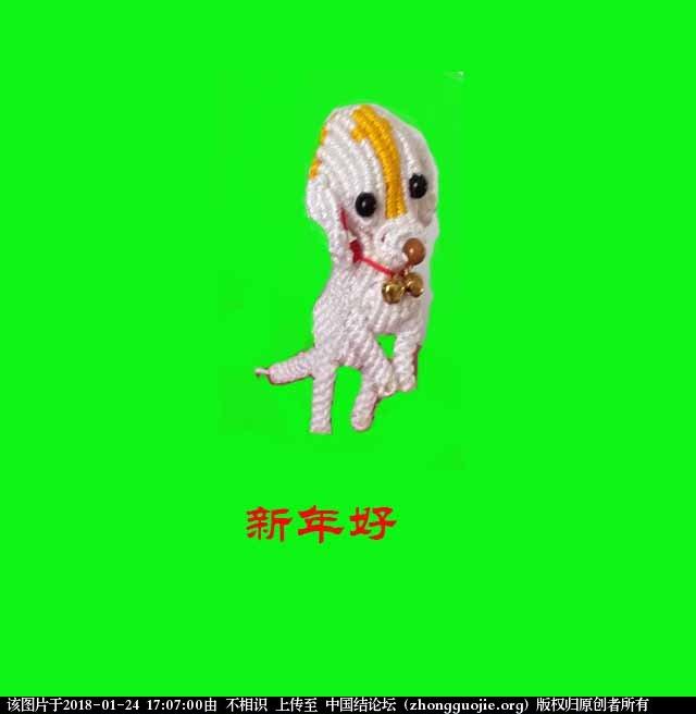 中国结论坛 狗 狗狗品种大全,泰迪我下面了,狗狗图片大全,各种狗狗图片 立体绳结教程与交流区 170309z1otrk1dzjoakozk