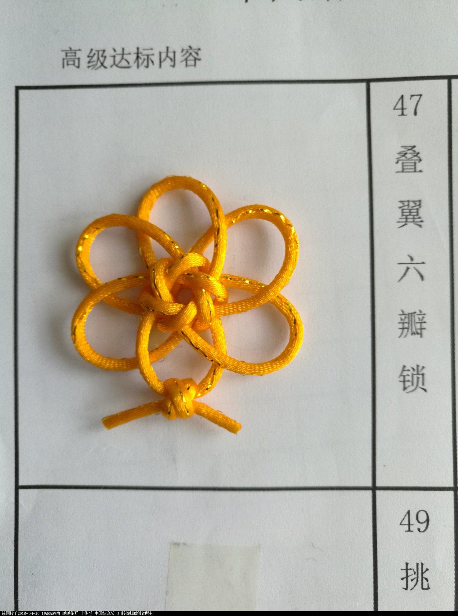 中国结论坛   中国绳结艺术分级达标审核 195055cyjoywe66863xmjz