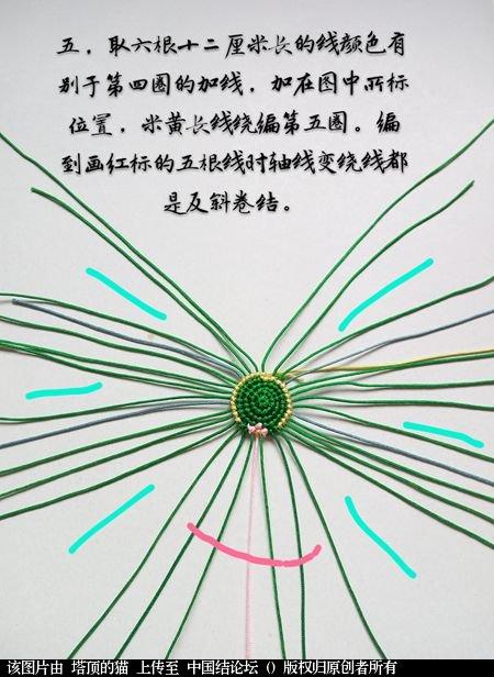 中国结论坛 十二生肖之小蛇 一条爱美,十二生肖,爱美,美的,一条 立体绳结教程与交流区 095301fdhgj181gbezbmeu