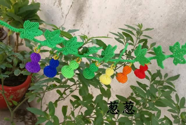 中国结论坛 七个葫芦  作品展示 095945cmn4yodmyy8yyomd