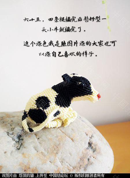 中国结论坛 十二生肖之小牛  立体绳结教程与交流区 223739wszdik7bx9uixx7s