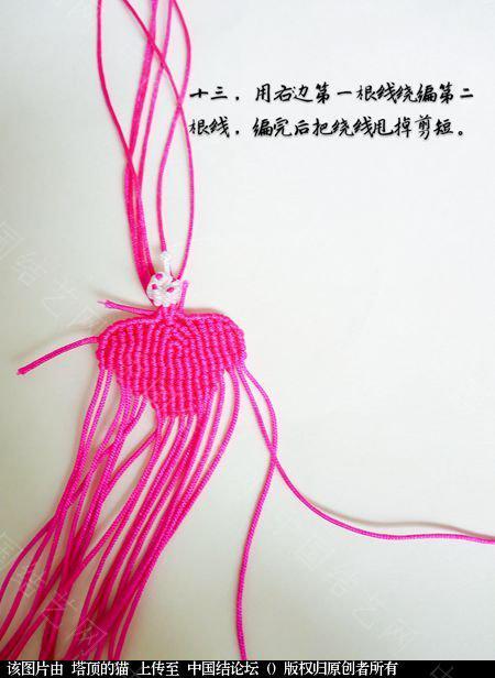 中国结论坛 蝴蝶兰小包饰  立体绳结教程与交流区 103721mqsvhkqiitsmki5s