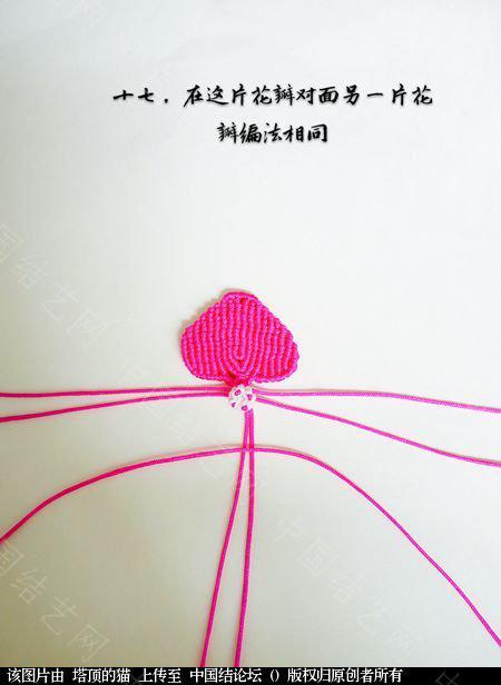 中国结论坛 蝴蝶兰小包饰  立体绳结教程与交流区 103722lg1jcdjyt18v13q1