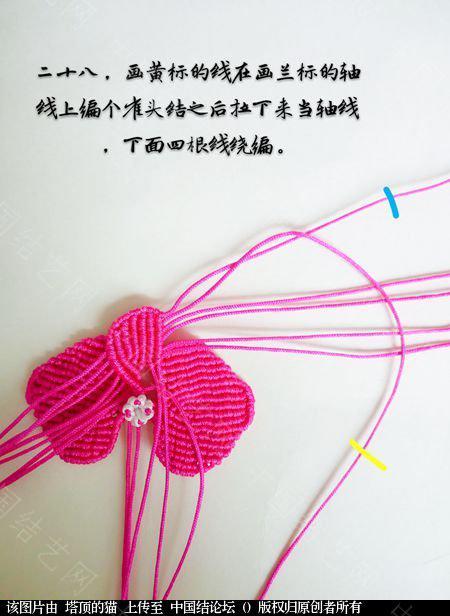 中国结论坛 蝴蝶兰小包饰  立体绳结教程与交流区 103724gzxnq566d50xxxz5