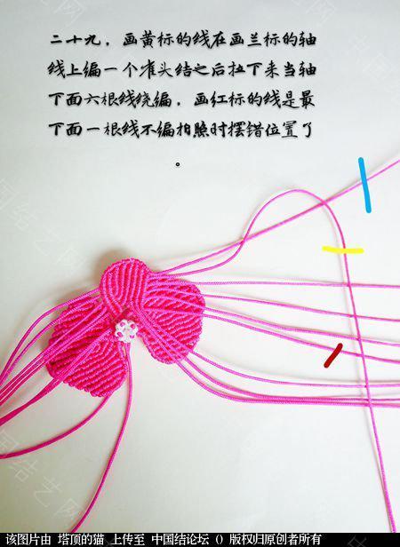 中国结论坛 蝴蝶兰小包饰  立体绳结教程与交流区 103724np6m2z2iym5shc75