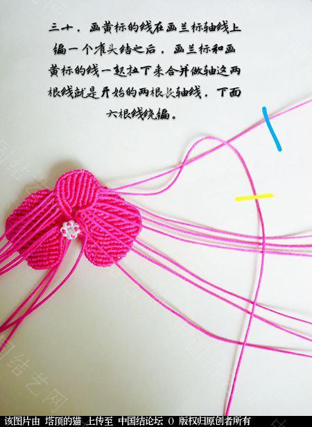中国结论坛 蝴蝶兰小包饰  立体绳结教程与交流区 103725a070ni4nkj9u7477