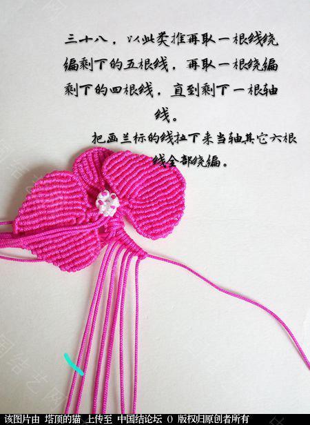 中国结论坛 蝴蝶兰小包饰  立体绳结教程与交流区 103726d7koxmi6x77lrom6