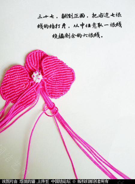 中国结论坛 蝴蝶兰小包饰  立体绳结教程与交流区 103726e0x9m0oen29oy0y7