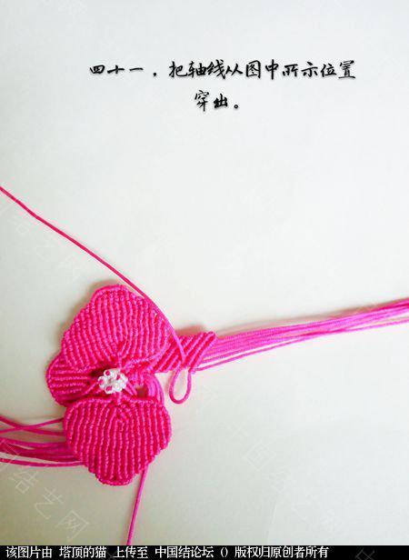 中国结论坛 蝴蝶兰小包饰  立体绳结教程与交流区 103726zfyxfzt1h16e8l8h