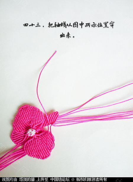 中国结论坛 蝴蝶兰小包饰  立体绳结教程与交流区 103727kmtikp8z8ul5k5ba