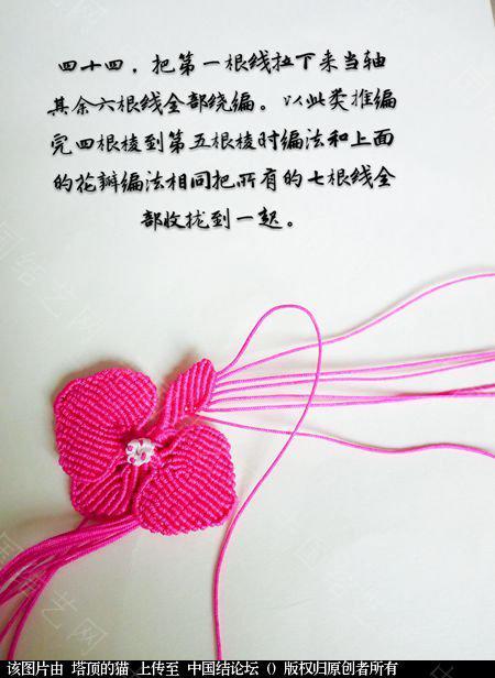 中国结论坛 蝴蝶兰小包饰  立体绳结教程与交流区 103727rkz6i9kiwdiisyy1