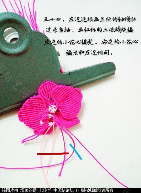 中国结论坛 蝴蝶兰小包饰  立体绳结教程与交流区 103729o1tq9x4z71j10j4z