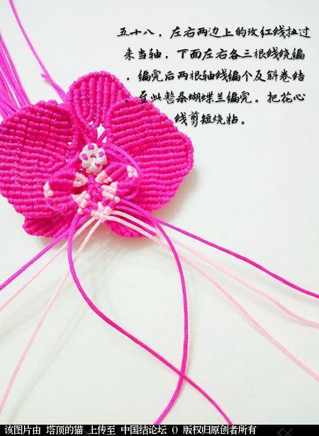 中国结论坛 蝴蝶兰小包饰  立体绳结教程与交流区 103730it0wcbace5webn4w