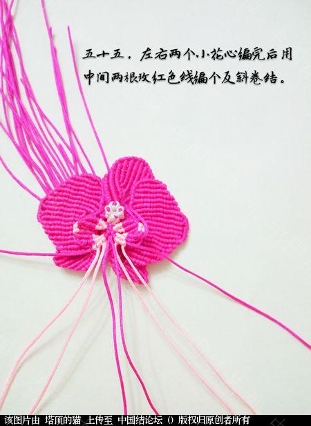 中国结论坛 蝴蝶兰小包饰  立体绳结教程与交流区 103730kx61tdd0c00c2u35