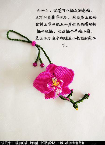中国结论坛 蝴蝶兰小包饰  立体绳结教程与交流区 103731x1mis9gfmck1lcg9