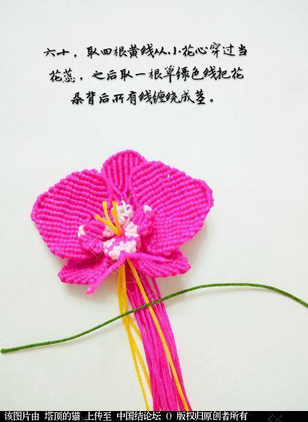 中国结论坛 蝴蝶兰小包饰  立体绳结教程与交流区 103731z857jv7sjjlsaxja