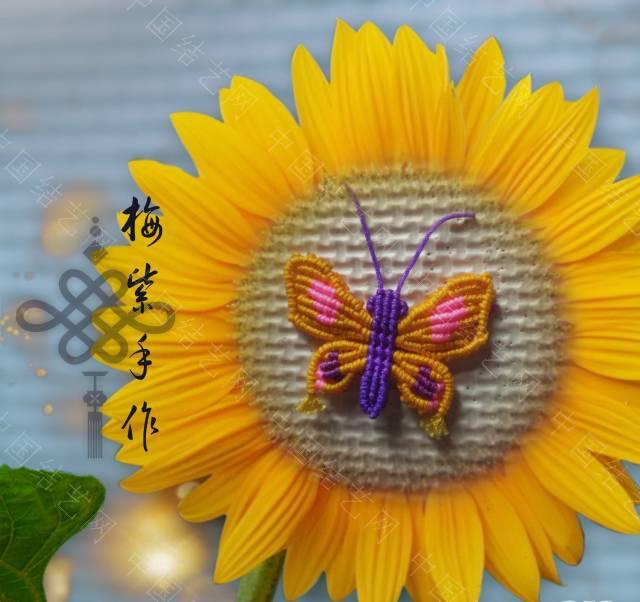 """中国结论坛 """"胡编乱造""""的蝴蝶,哈哈  作品展示 155755rety9ofnt39xl93f"""