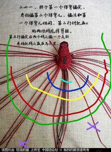 中国结论坛 十二生肖之小马  立体绳结教程与交流区 191552m16fxds16s6foopq
