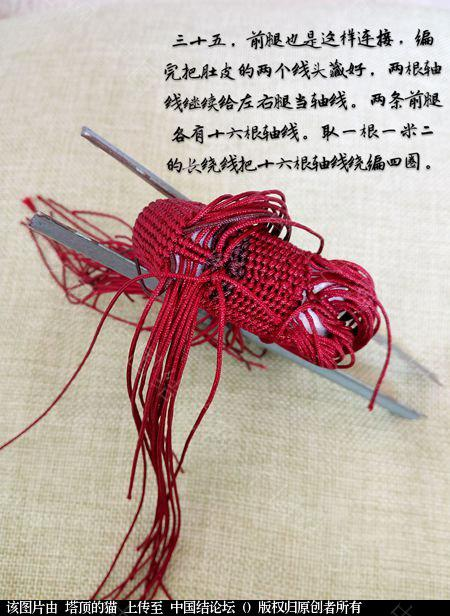 中国结论坛 十二生肖之小马  立体绳结教程与交流区 191556e4gxx2r1nvq2ma2x