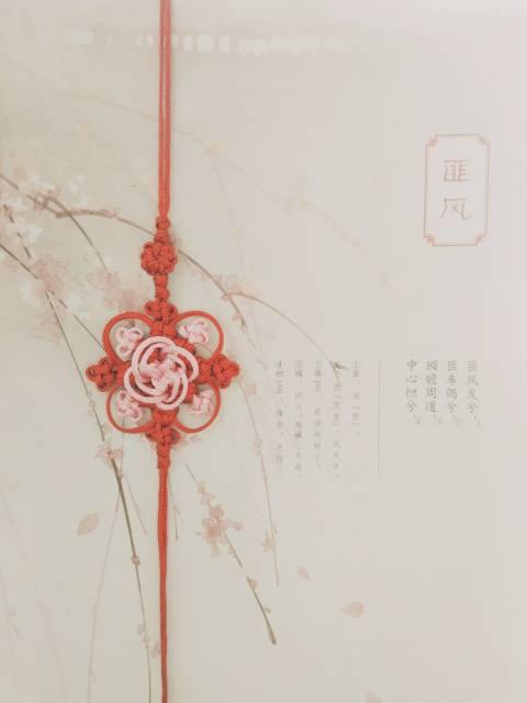 中国结论坛 挂饰  作品展示 193216s4a5yer000j0c4k2