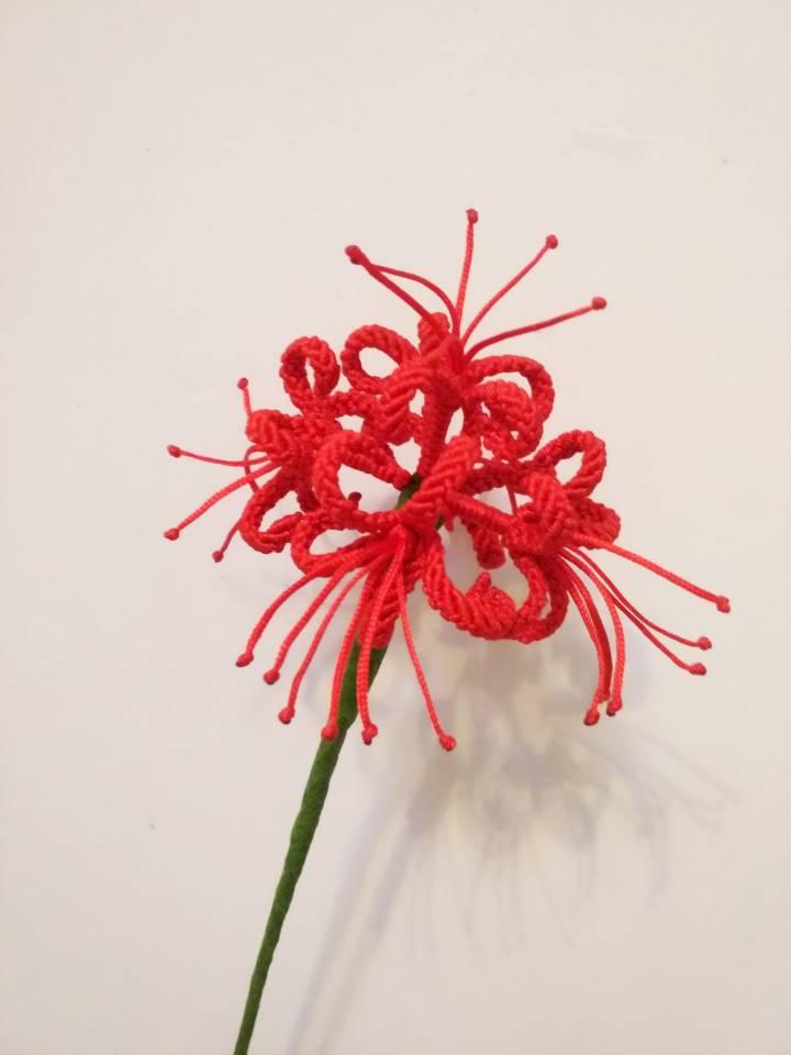 中国结论坛 最近编的,都是红色 红色编绳手链款式,红色手绳编法视频,红色手链怎么编织,编绳如何配色,红腰绳的编法 作品展示 155956m33tbmk55vy6g3ev