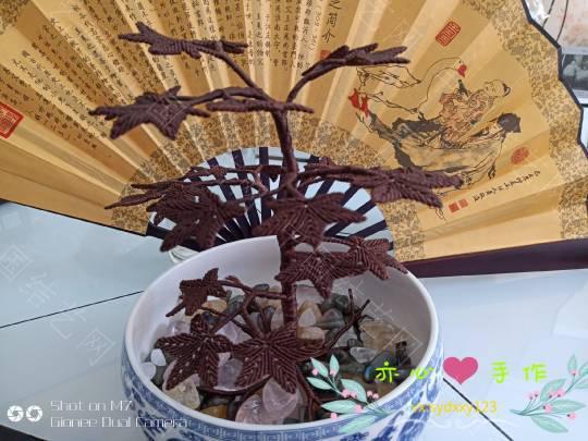 中国结论坛 作一棵树,站成一道风景  作品展示 085619szivk00s2izjnpks